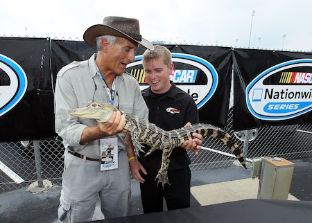 "Jack Hanna of the Columbus Zoo and Justin ""lil gator"" Allgaier, driver of the No. 12 Verizon Wireless Dodge, holds an alligator in the Nationwide fan area.  (Credit: Andy Lyons/Getty Images)"